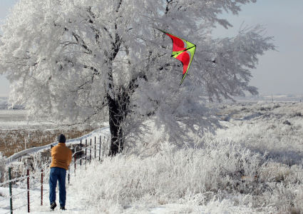 stunt-sport-kites-photo-62015.jpg