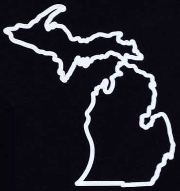 Michigan Awesome - State Outline Sticker