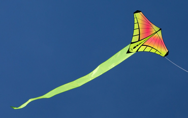 Prism Mantis Kite - Sunrise