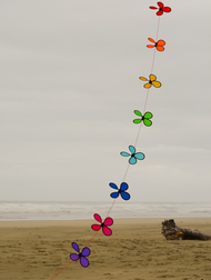 Rainbow Flower String