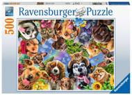 Animal Selfie 500 pc puzzle