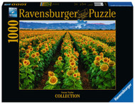 Fields of Gold 1000 pc Puzzle