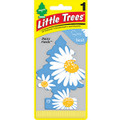 Little Trees Air Fresheners *Daisy Fields* - 24 Pack.