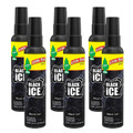 Little Trees -Black Ice- 3.5oz Spray Bottles, 6-Pack