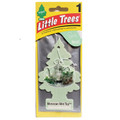 Little Tree Air Fresheners *Moroccan Mint Tea* - 24 Pack