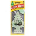 Little Tree Air Fresheners *Moroccan Mint Tea* - 24 Pack