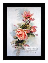 Light Pink Roses - Framed Art Print