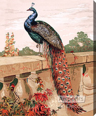 Peacock by Harrison Weir - Stretched Canvas Art Print