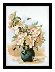 Apple Blossoms - Framed Art Print