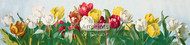 A Shower of Tulips by Paul de Longpre - Art Print