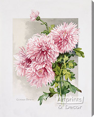 October Beauty by James Callowhill - Stretched Canvas Art Print
