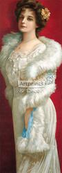 Elegance In Fur - Art Print
