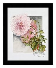 Lilian B. Bird - Framed Art Print