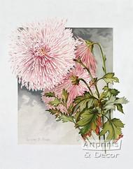Lilian B. Bird by James Callowhill - Art Print