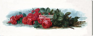 American Beauty Roses by Paul de Longpre - Stretched Canvas Art Print
