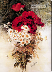 Poppies & Daisies by Paul de Longpre - Stretched Canvas Art Print