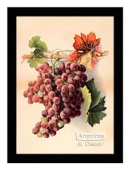 Grapes II - Framed Art Print