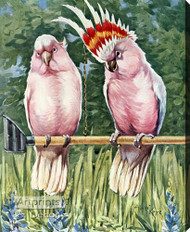 Cockatoos Parrot by Albert Kaye - Stretched Canvas Art Print
