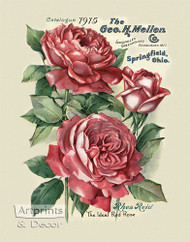 The Ideal Red Rose by Rhea Reid - Art Print