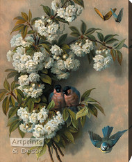 The Flowering Perch by Paul De Longpre - Stretched Canvas Art Print