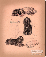 Spaniels - Stretched Canvas Art Print