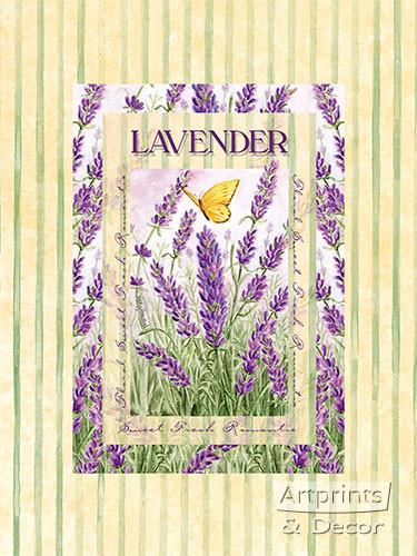 Lavender - Art Print