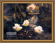 Swan Lake - Framed Art Print