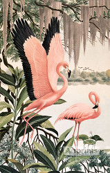 Pink Flamingos - Art Print
