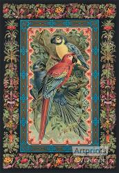 Macaws by JCK - Art Print