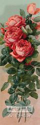 The Favorites by Paul de Longpre - Art Print