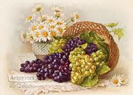 Grapes & Daisies by Paul de Longpre - Art Print