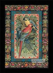 Macaws - Framed Art Print