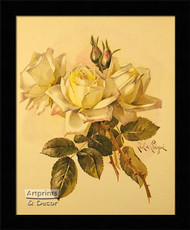Roses by Paul de Longpre - Framed Art Print*
