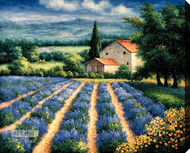 Lavender Flower Field - Stretched Canvas Art Print