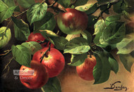Apples by V. Sangon - Art Print