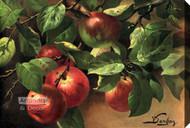 Apples by V. Sangon - Canvas Art Print