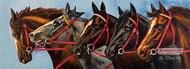 Five Horses - Art Print