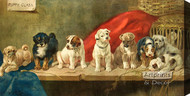 Puppy Class by WH Trood - Stretched Canvas Art Print
