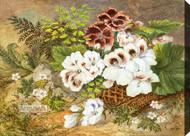 Flowering Basket by JJB - Stretched Canvas Art Print