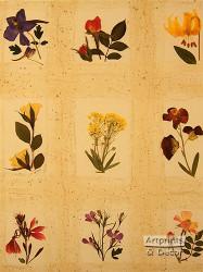Floral Elegance by Cheryl Welch - Art Print