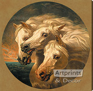 Pharaoh's Horses by J.F. Herring - Stretched Canvas Art Print