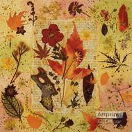 Prose in Flora - Framed Art Print