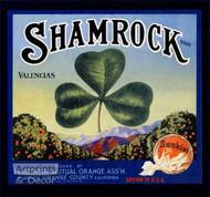 Shamrock Brand Navels - Art Print^