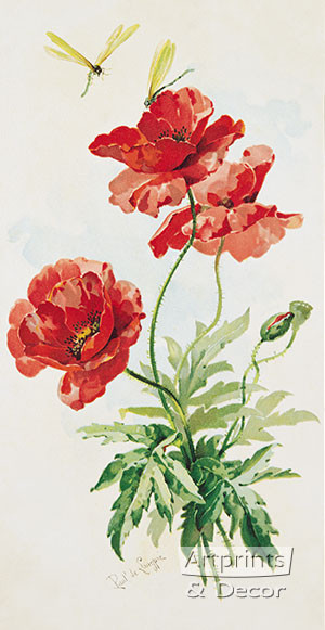Poppies by Paul de Longpre - Framed Art Print