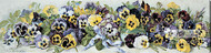 Study of Pansies by Grace Barton Allen - Stretched Canvas Art Print