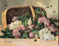 A Basket of Lilacs by Paul de Longpre - Stretched Canvas Art Print