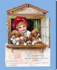 D. S. Peterman & Co. - Stretched Canvas Vintage Ad Art Print