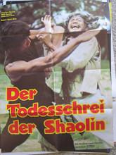 Mysterious Footworks of Kung Fu (Todesschrei der Shaolin, Der
