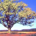 Roy Scoutz Albums: Autumn's Whisper