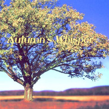 Roy Scoutz Albums: Autumn's Whisper